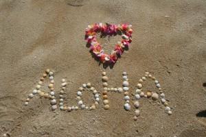 aloha-305853_1280